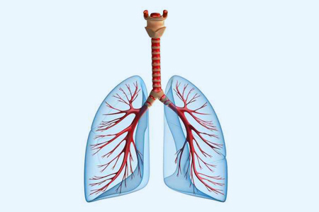 COPD Therapie